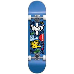 """Τροχοσανίδα Skateistan Sky Doodle FP 7.5"""""""